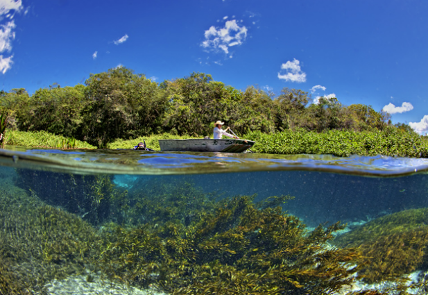 Largest underwater panoramic image 6