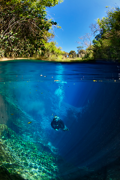 Largest underwater panoramic image 4