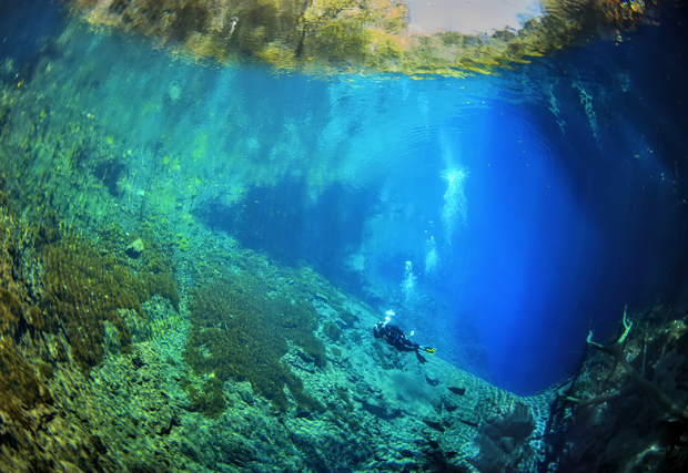 Largest underwater panoramic image 15