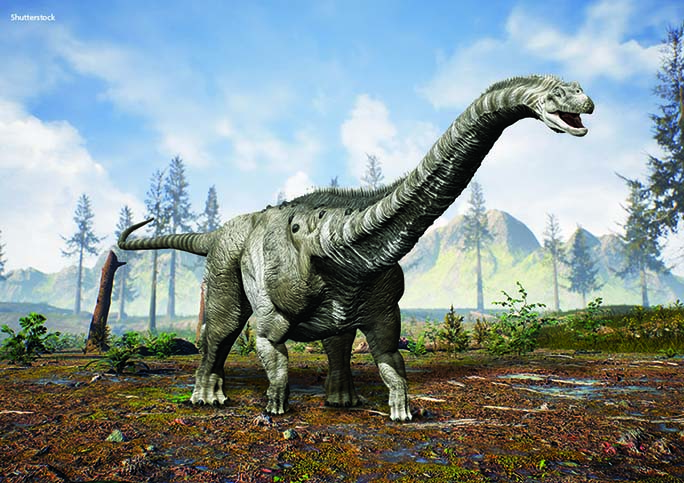 While there have been several other contenders for the title, Argentinosaurus is still widely considered the heaviest dinosaur. Based on its mid-range estimate, it weighed the same as about nine T. rexes or 13 African elephants!