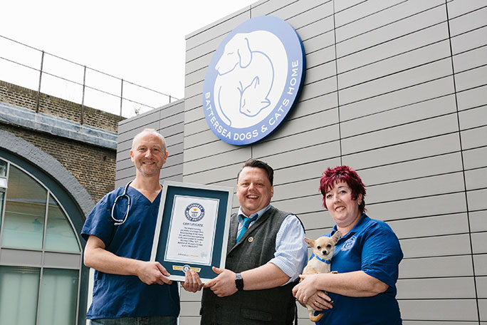 Battersea Dogs and Cats Home certificate presentation