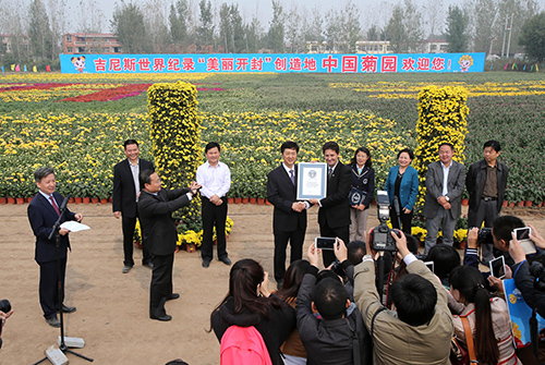 Carpet flowers certificate.jpg