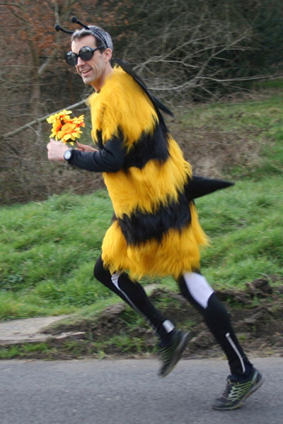 Fastest marathon dressed as an insect