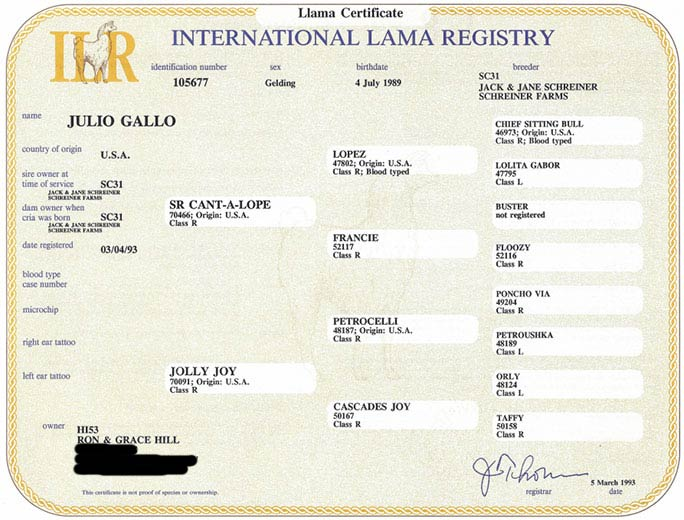 International Llama Registry