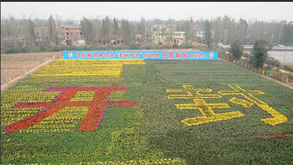 Government of Kaifeng City blossoms again for flower record in China