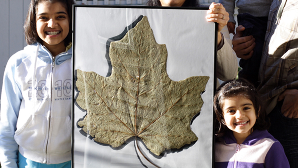 GWR Day 2011: Calling all Canadians! Have you found the world's largest Maple Leaf?