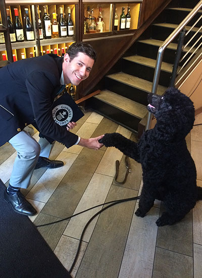 Sailor the dog shakes hands with a Guinness World Records adjudicator
