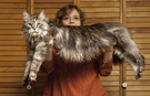 Record holder profile video: Stewie – the longest cat in the world