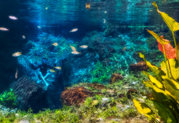 Largest underwater panoramic image 23