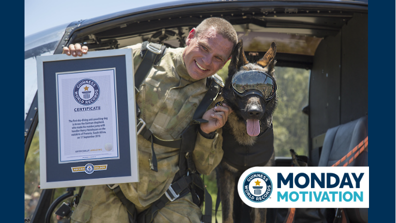 Monday Motivation: Arrow - the dog that skydives to save wildlife