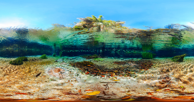 Largest underwater panoramic image 27
