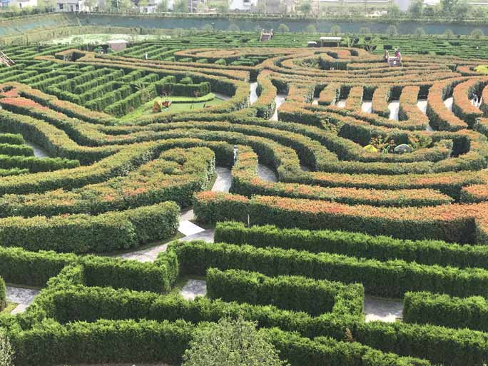 Largest hedge maze 2