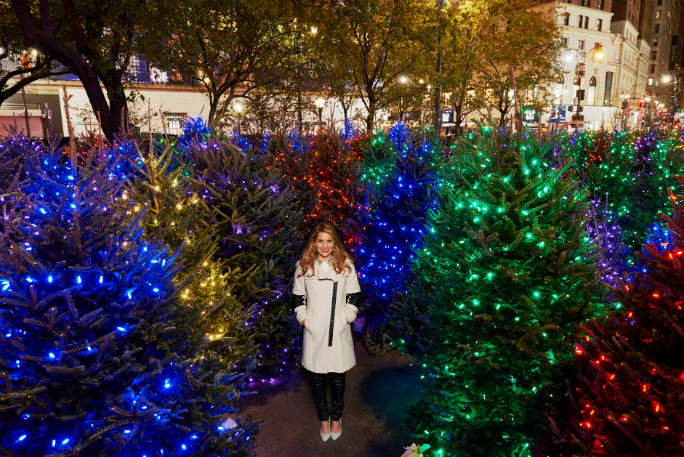largest display of illuminated christmas trees