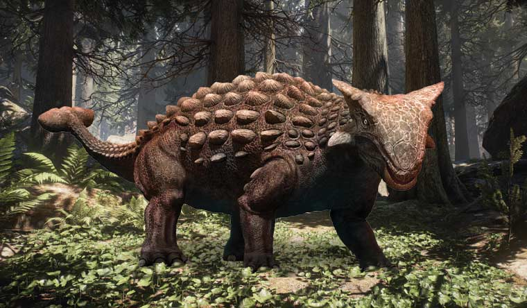largest armoured dinosaur