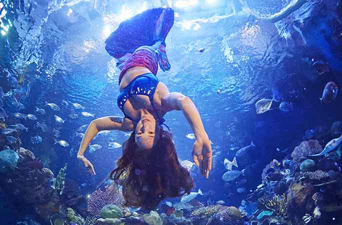 Ariana-Liuzzi-most-360-downward-spins-underwater-in-one-minute.jpg