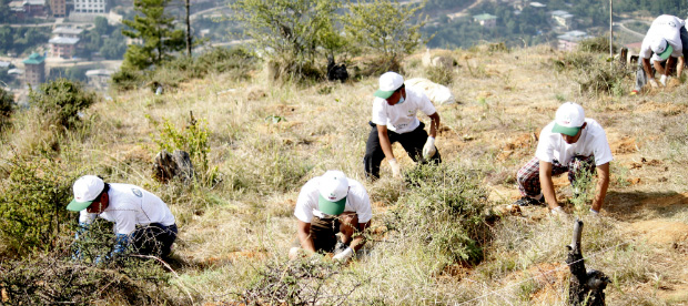 BEGIN Buthan Most trees planted in one hour Guinness World Records