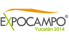 Expocampo Yucatán dishes out record for largest serving of octopus
