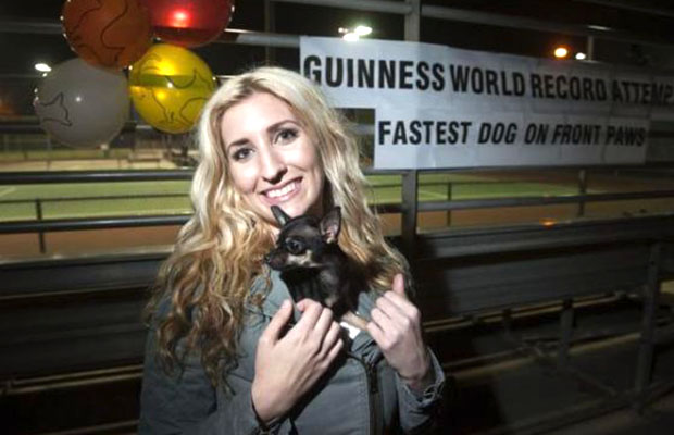 Fastest-5-metres-on-front-paws-by-a-dog_Konjo_guinness_world_records_attempt_photo