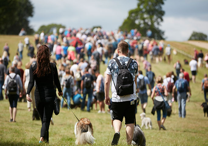 Take part in the Great Dog Walk, which will be launched by either Professor Fitzpatrick or Clare Balding