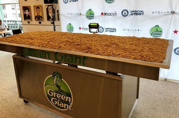 Largest green bean casserole full shot