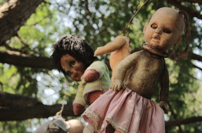Largest collection haunted dolls