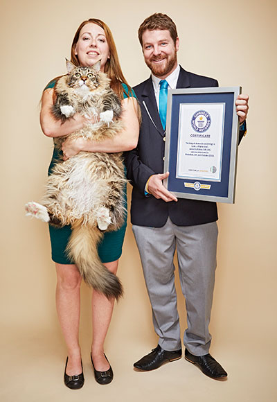 Longest cat living Ludo with GWR judge