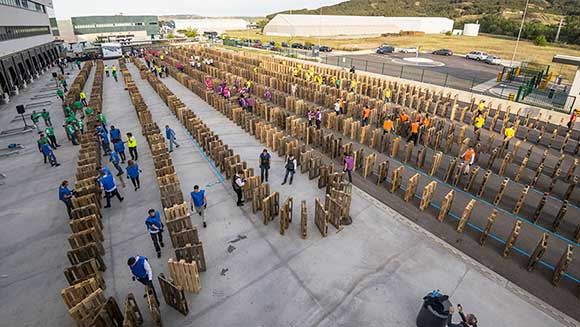 Lidl employees topple domino record in Spain