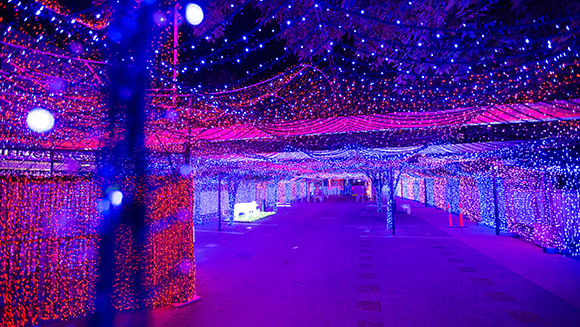 Australian dad creates record-breaking Christmas lights display