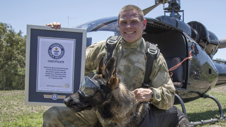 First skydiving antipoaching dog 5