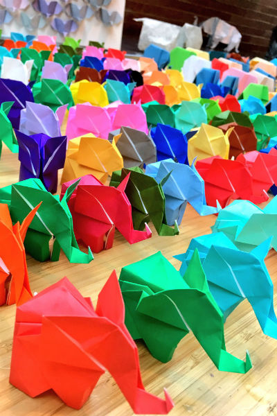 Largest display of origami elephants 2