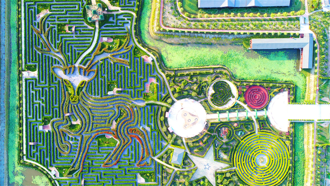 Video: Look round the largest maze which features a path more than 9 km long
