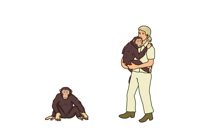 illustration-of-jane-goodall-with-chimps