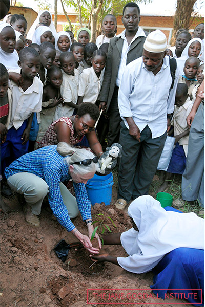 Jane plants a tree sapling with school pupils in Tanzania, as part of the Roots & Shoots initiative