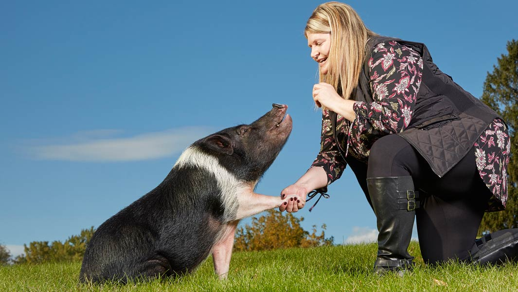 Multi-talented mini-pig hogs the limelight and brings joy to her community