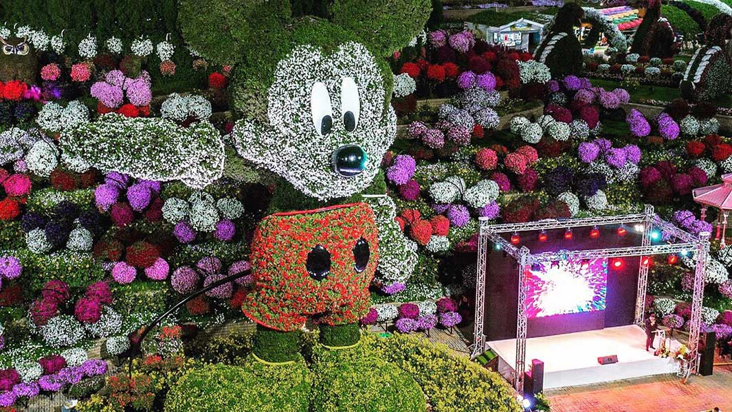 Huge Mickey Mouse floral display becomes world's tallest topiary sculpture