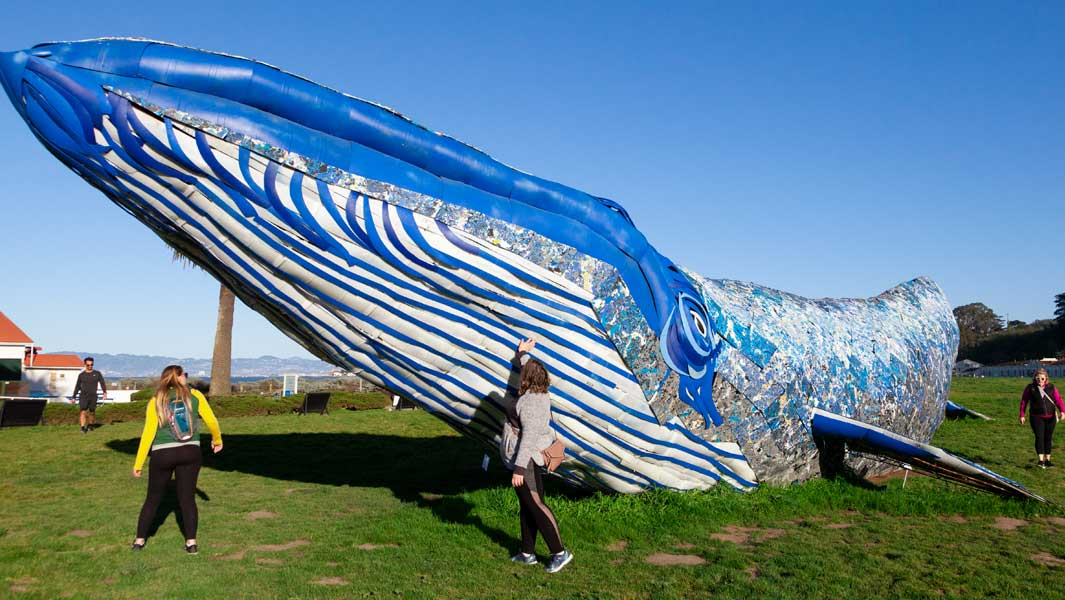 A recycled plastic whale is now the largest recycled plastic sculpture (supported), measuring 25.89 m (84 ft 11.6 in) long, 8.07 m (26 ft 5.8 in) wide and 4.2 m (13 ft 9.6 in) high