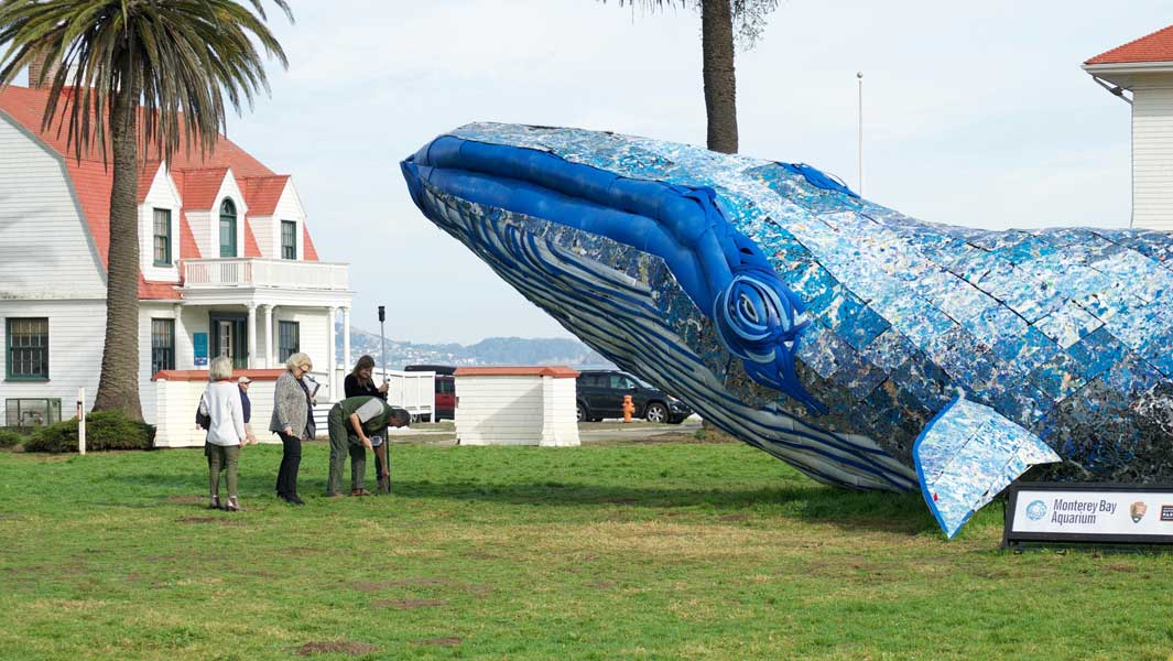 Life-size whale made of recycled plastic to 'educate people about ocean pollution'