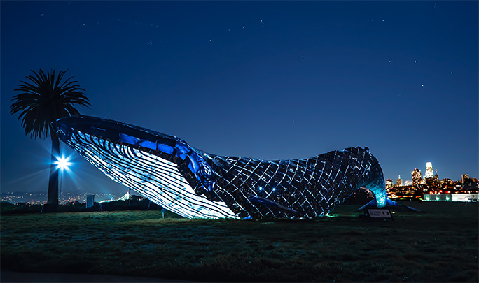 Recycled plastic whale San Francisco night
