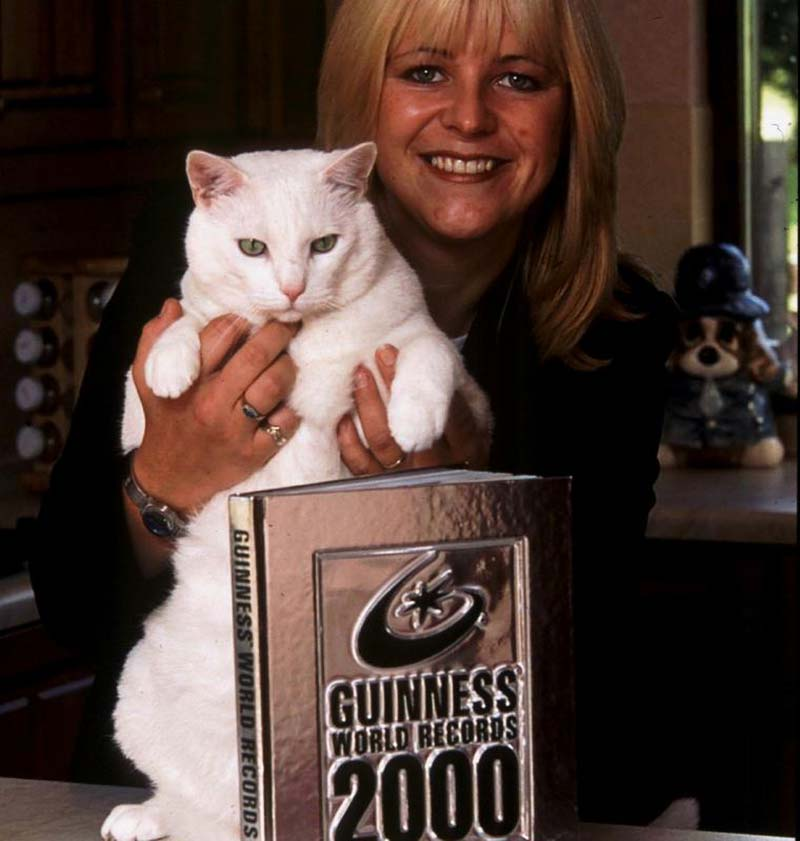 Snowbie longest domestic cat former record holder