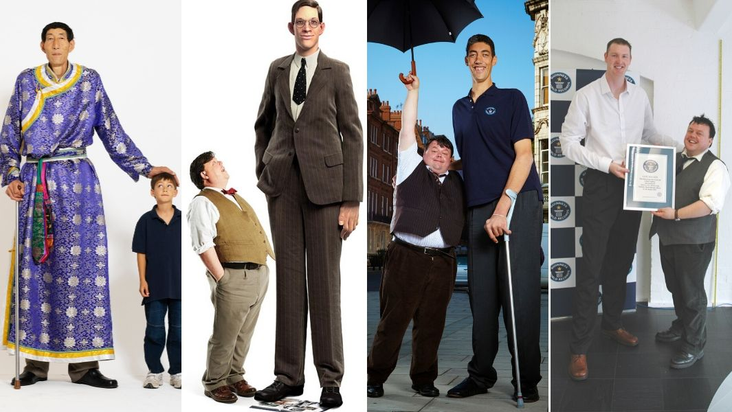 Tallest man in the world including Sultan Kosen and Robert Wadlow