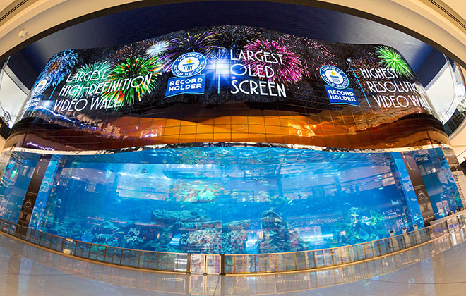 Largest high-definition video wall