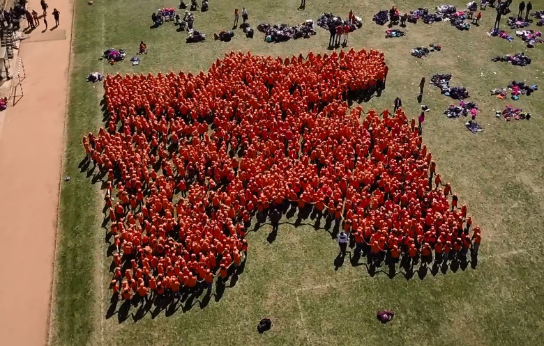 Largest human jigsaw puzzle piece