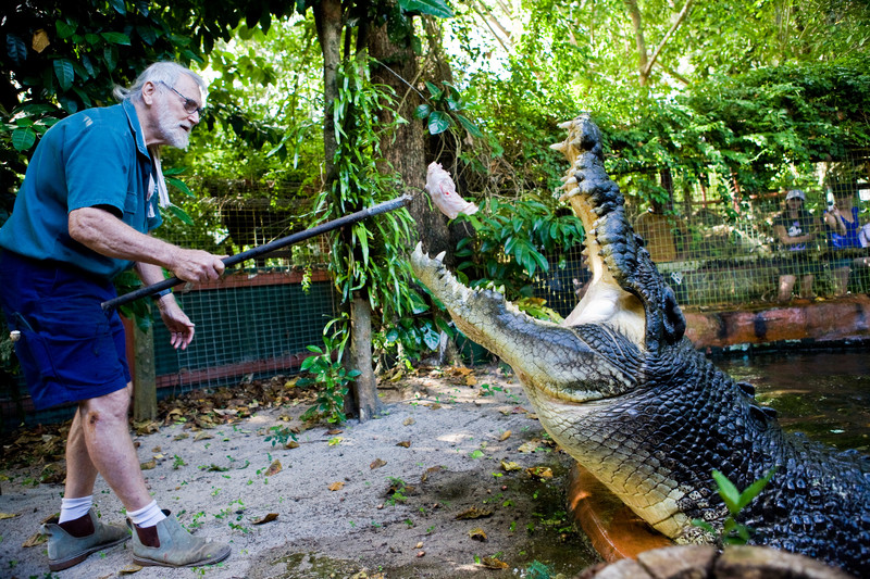 Largest crocodile in captivity (living)