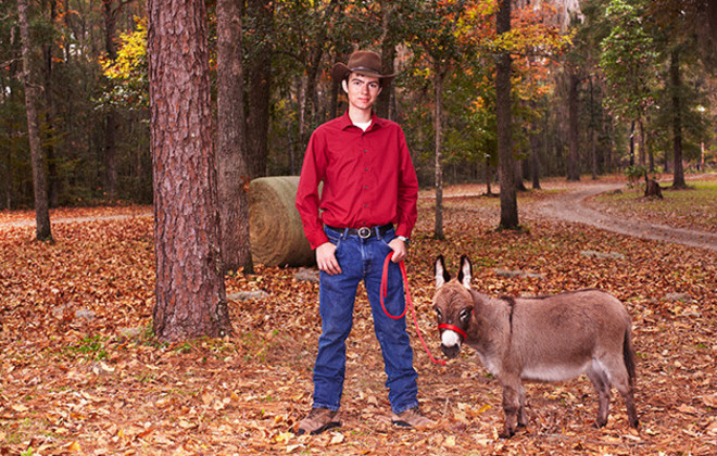 Shortest donkey