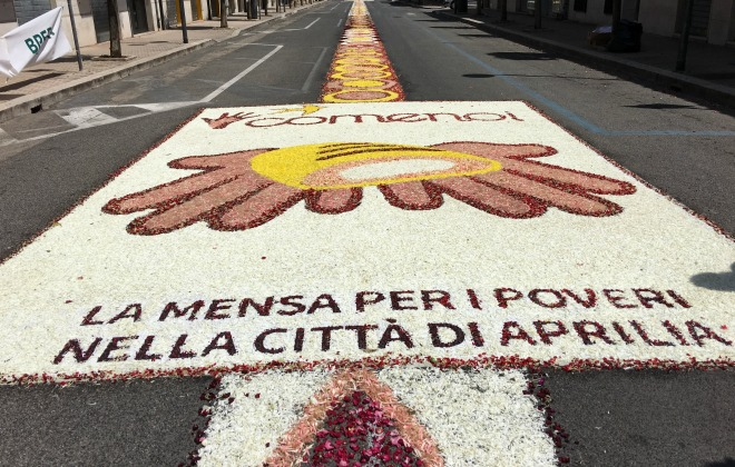 Largest flower petal carpet