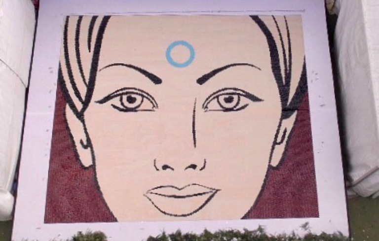 Largest jewellery bindi mosaic (image)