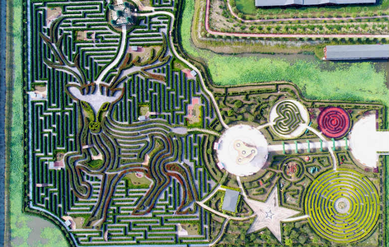 Largest pathway network in a hedge maze (permanent)