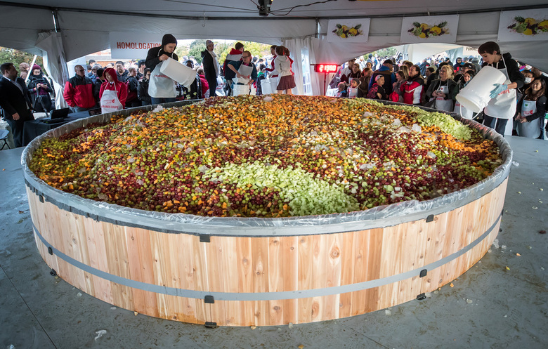 Largest fruit salad