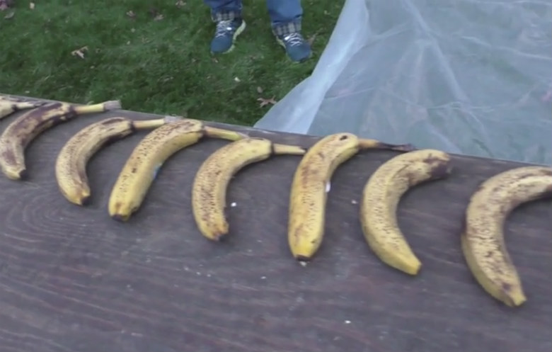 Most bananas snapped in one minute