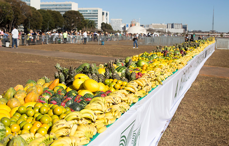 Largest fruit display